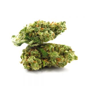 Jack Herer Medical Marijuana Strain